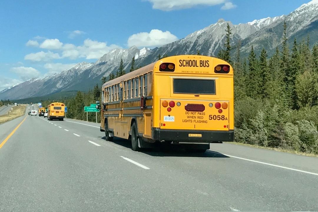 school-bus-494542-edited.jpg